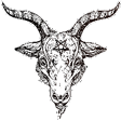 goat@radical.town